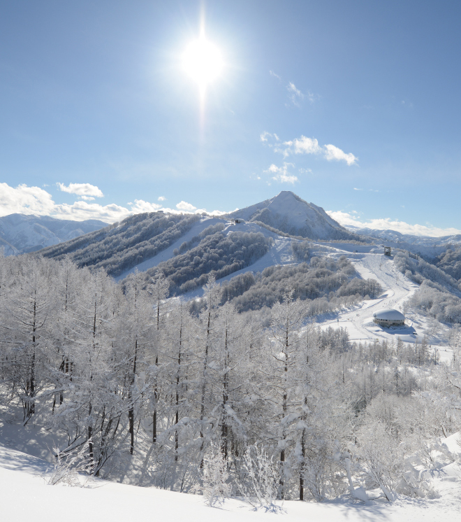 スキー場写真|Maiko Snow Resort